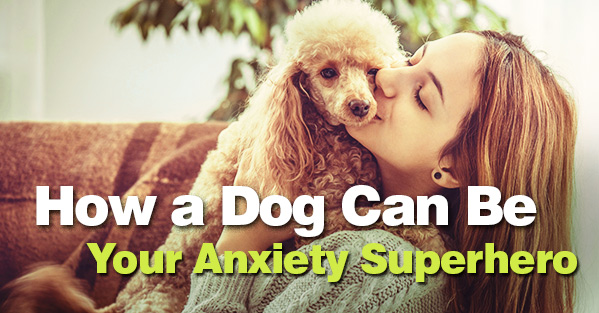 How a Dog Can Be Your Anxiety Superhero